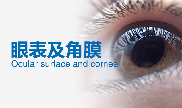 常见角膜病有哪些